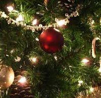christmass-tree